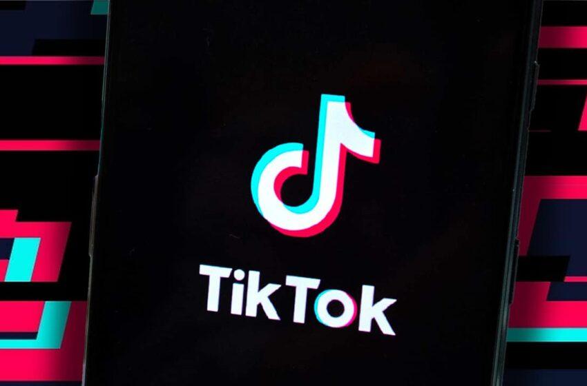 13 Trending Ideas To Build More Followers on TikTok