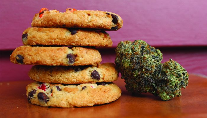 Why You Should Avoid Cannabis Edibles on an Empty Stomach