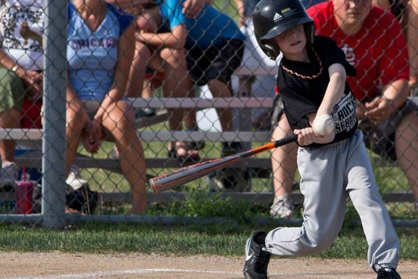Focuses To Consider While Picking A Youth Baseball Bat