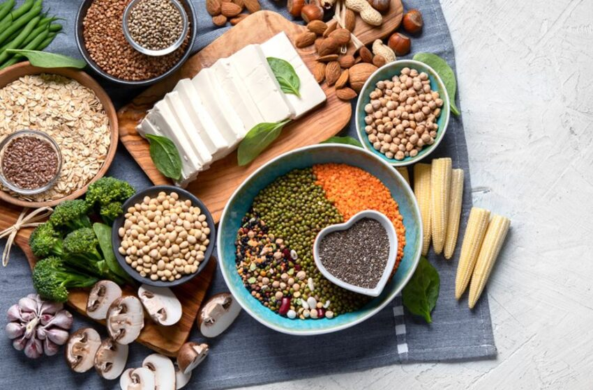The Basics Of A High Protein Diet For Weight Management | Vegan Plant Protein