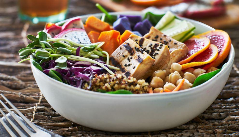 Rich Protein Diet