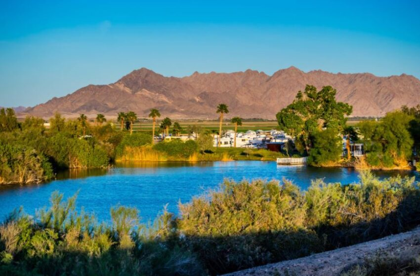 4 Reasons to Hire a Real Estate Agent When Purchasing a Property in Arizona