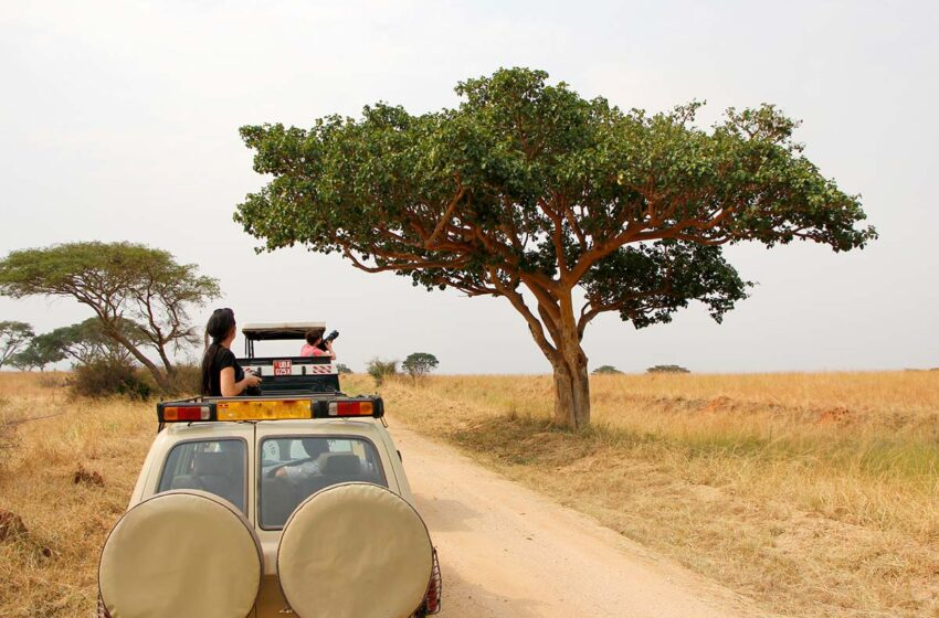 5 Best Places to Visit on a Self Drive Safari in Uganda