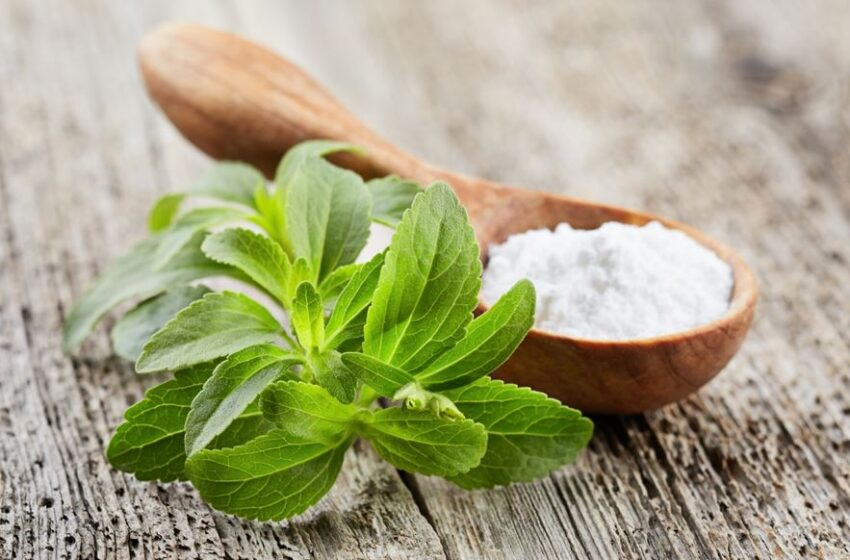 Stevia: Unsweetened Truths of the Natural Sweetener