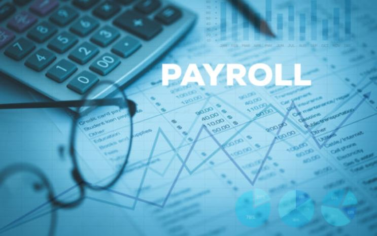 Everything You Need To Know About Payroll Services And Software